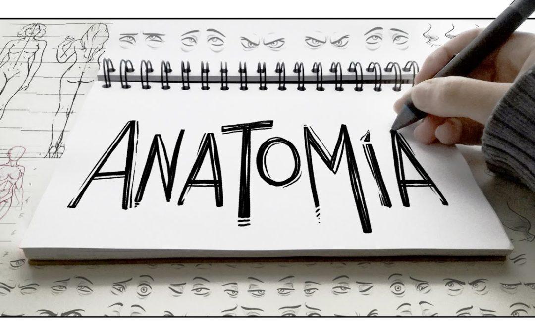 Blogs sobre Anatomía